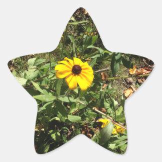 Pegatina En Forma De Estrella Flores azules de Ridge
