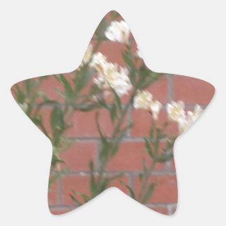 Pegatina En Forma De Estrella Flores en ladrillo