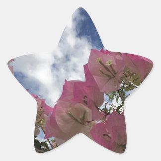Pegatina En Forma De Estrella flores rosadas contra un cielo azul