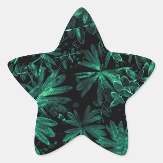 Pegatina En Forma De Estrella Foto oscura de la flora