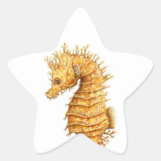 Pegatina En Forma De Estrella Hipocampo del hipocampo del caballo de mar