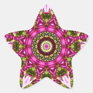 Pegatina En Forma De Estrella La primavera florece, pica, Flor-Mandala,