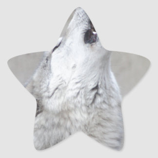 Pegatina En Forma De Estrella Lobo gris del grito