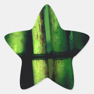 Pegatina En Forma De Estrella Macro verde