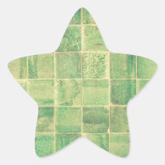 Pegatina En Forma De Estrella Pared abstracta