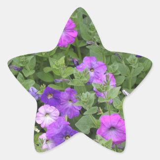 Pegatina En Forma De Estrella Petunia púrpura del tema del jardín de la