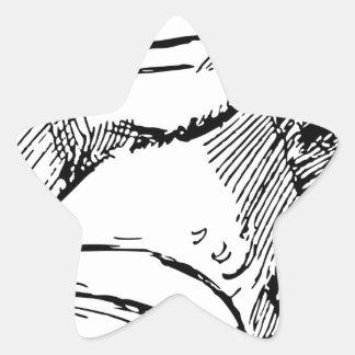 Pegatina En Forma De Estrella Rana