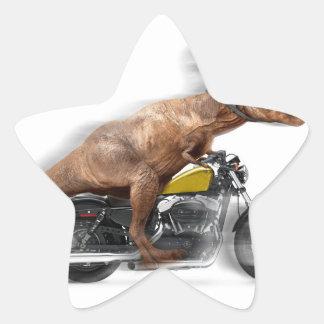 Pegatina En Forma De Estrella Rex del motocicleta-tyrannosaurus-t del rex de T -