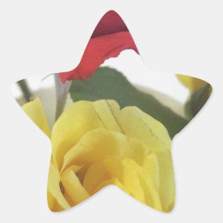 Pegatina En Forma De Estrella Rosas amarillos del amd rojo