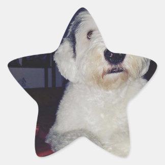 Pegatina En Forma De Estrella Sam el perro pastor