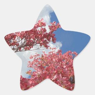 Pegatina En Forma De Estrella Torrente de flores
