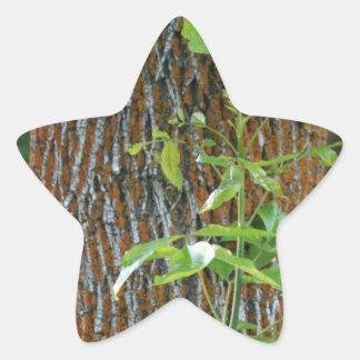 Pegatina En Forma De Estrella Tronco con follaje