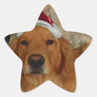 Pegatina En Forma De Estrella Un golden retriever en el navidad con el gorra de