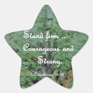 Pegatina En Forma De Estrella Valeroso del soporte y fuerte firmes