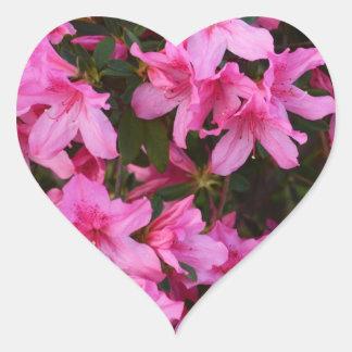 Pegatina floral del corazón de la azalea