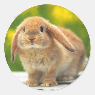 Pegatina lindo del conejo