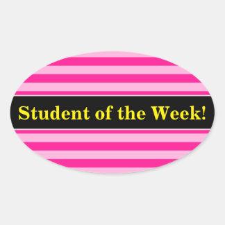 Pegatina Ovalada Alabanza del estudiante + Rayas rosas claras y de