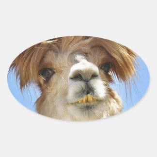 Pegatina Ovalada Alpaca con el pelo loco