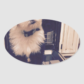 Pegatina Ovalada Amor del perro pastor