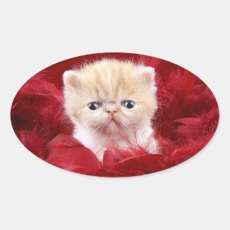 Pegatina Ovalada gato lindo