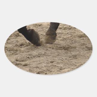 Pegatina Ovalada Horse hooves