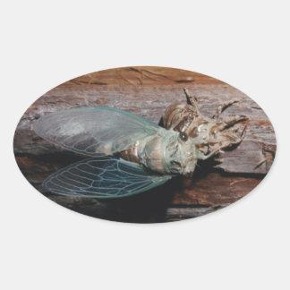 Pegatina Ovalada La cigarra seca sus alas