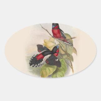 Pegatina Ovalada Pájaros 002 del vintage