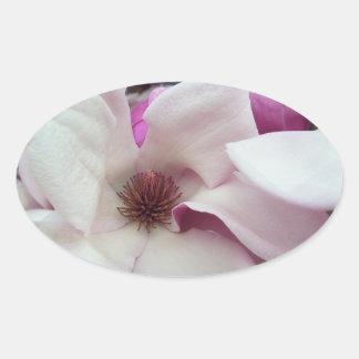 Pegatina Ovalada Pegatinas - floración de la magnolia de platillo