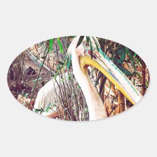 Pegatina Ovalada pelícanos