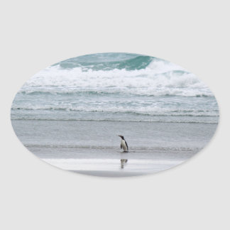 Pegatina Ovalada Pingüino que vuelve del océano