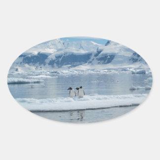 Pegatina Ovalada Pingüinos en un iceberg