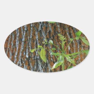 Pegatina Ovalada Tronco con follaje