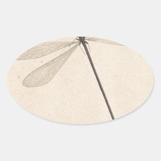 Pegatina Ovalada Una libélula, por Nicolás Struyk, temprano décimo