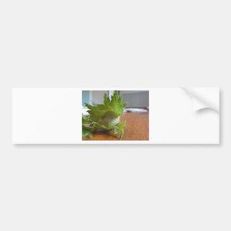 Pegatina Para Coche Avellanas verdes frescas en una tabla de madera