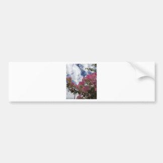 Pegatina Para Coche Bougainvillea rosado