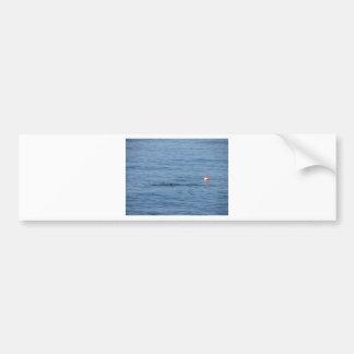Pegatina Para Coche Buceador del mar en nadada del juego del equipo de