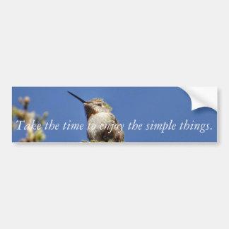 Pegatina Para Coche Colibrí en rama por SnapDaddy