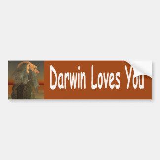 Pegatina Para Coche Darwin