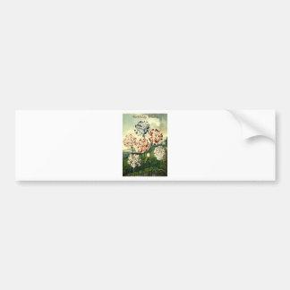 Pegatina Para Coche Deseos del cumpleaños - clavel rayado
