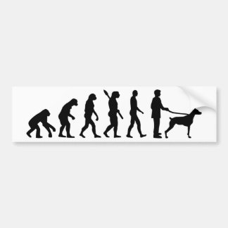 Pegatina Para Coche Doberman de la evolución