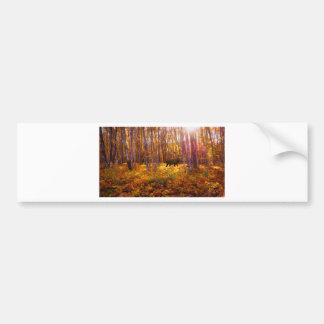 Pegatina Para Coche Dólar en los árboles