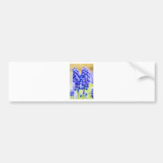 Pegatina Para Coche Dos jacintos de uva azules en primavera