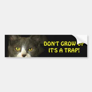 Pegatina Para Coche El gato de parachoques dice no crece Meme