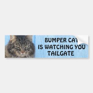 Pegatina Para Coche El gato de parachoques está mirando el meme de la