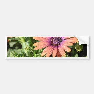 Pegatina Para Coche Flores anaranjadas y púrpuras