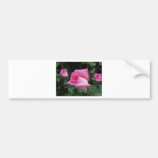 Pegatina Para Coche Flores color de rosa rosadas con las gotitas de