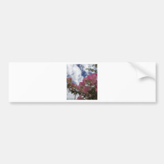 Pegatina Para Coche flores rosadas contra un cielo azul