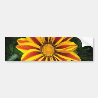 Pegatina Para Coche Foto anaranjada hermosa de la flor de Sun