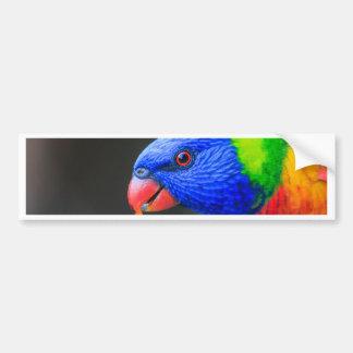 Pegatina Para Coche Fresco-Arco iris-Lorikeet-silkenphotography