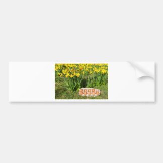 Pegatina Para Coche Huevos en caja en hierba con los narcisos